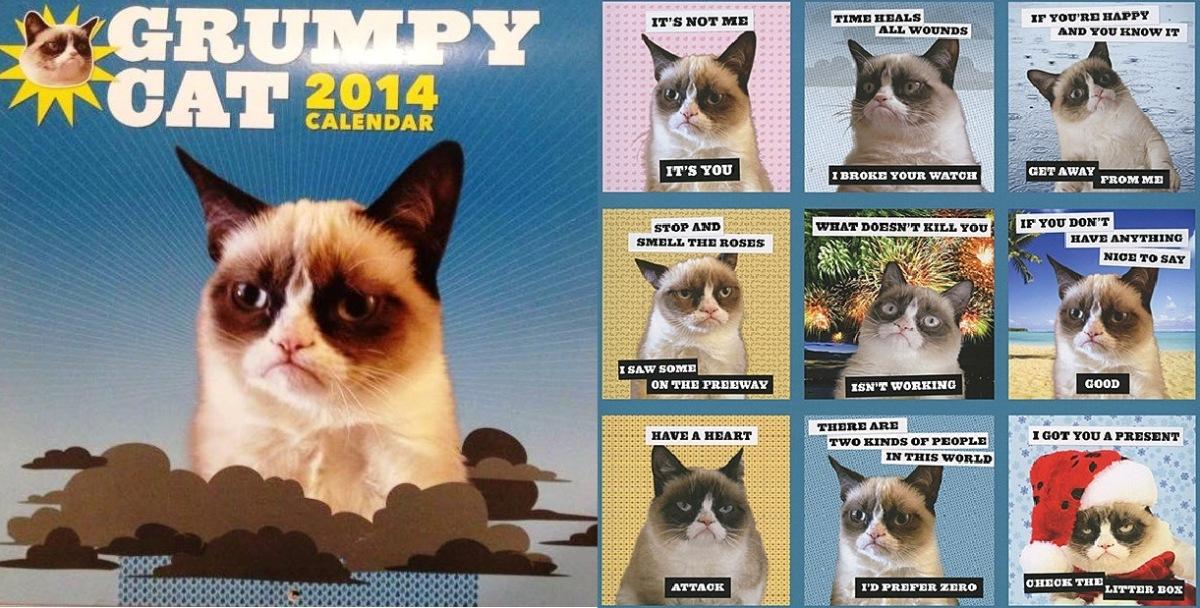 My Grumpy Cat Calendar